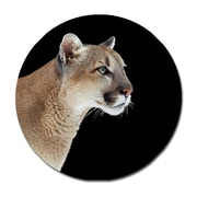 Serge De Troyer Collection 'Puma Profile' Photographic Print on Glass; 46'' H x 46'' W