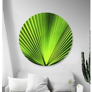 Serge De Troyer Collection 'Green Palm Frond' Graphic Art Print on Glass; 46'' H x 46'' W
