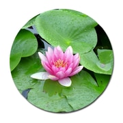 Serge De Troyer Collection 'Purple Lotus Lilly Pads' Photographic Print on Glass; 46'' H x 46'' W