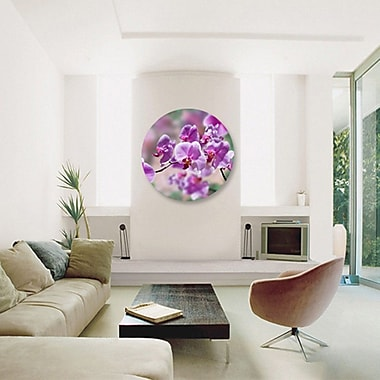 Serge De Troyer Collection 'Purple Orchids' Photographic Print on Glass; 24'' H x 24'' W