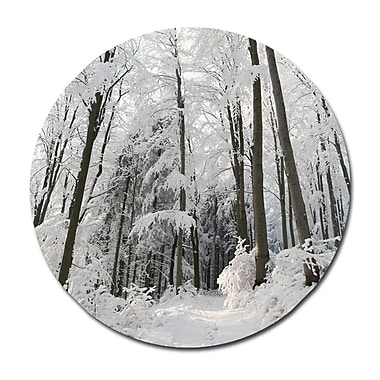 Serge De Troyer Collection 'Snowy Path' Photographic Print on Glass; 24'' H x 24'' W