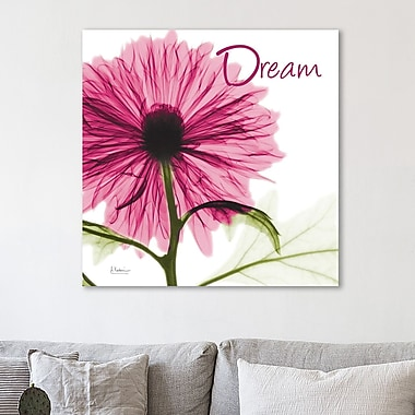 Winston Porter 'Pink Chrysanthemum Dream' Graphic Art Print on Wrapped Canvas; 48'' H x 48'' W