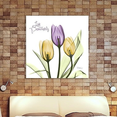 Winston Porter 'Live Passionately Tulips' Graphic Art Print on Wrapped Canvas; 24'' H x 24'' W