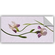 Winston Porter Grafton Iris Melody 1 Wall Decal; 24'' H x 48'' W x 0.1'' D