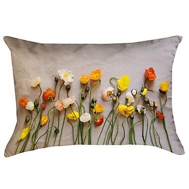 Latitude Run Tuyen Dried Flowers Pillow Cover