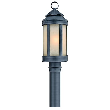 Darby Home Co Theodore Lantern Head in Aged Iron; 18'' H x 7'' W