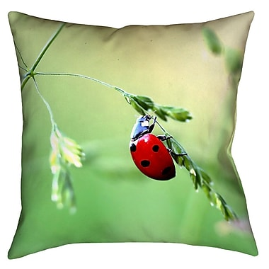 Latitude Run Duriel Double Sided Print Square 100pct Cotton Pillow Cover; 14'' x 14''