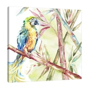 Bay Isle Home 'Watercolor Bamboo and Parrot' Print on Wrapped Canvas; 48'' H x 48'' W