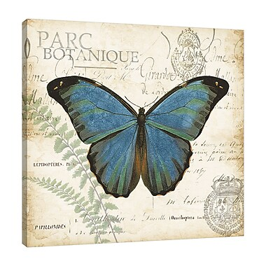 August Grove 'Butterfly Histoire Naturelle' Graphic Art Print on Wrapped Canvas; 12'' H x 12'' W