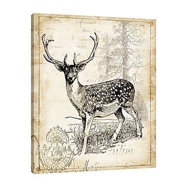 Loon Peak 'Antique Deer Engraving II' Graphic Art Print on Wrapped Canvas; 24'' H x 30'' W