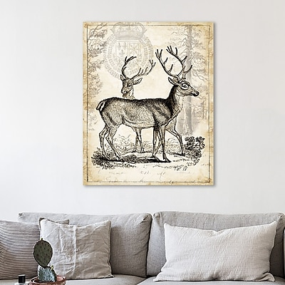 Loon Peak 'Antique Deer Engraving' Graphic Art Print on Wrapped Canvas; 32'' H x 40'' W