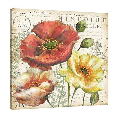 Winston Porter 'Poppies Histoire Naturelle' Graphic Art Print on Wrapped Canvas; 30'' H x 30'' W