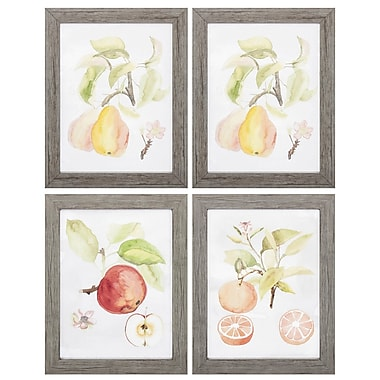 August Grove 'Watercolor Fruit' 4 Piece Framed Watercolor Painting Print Set