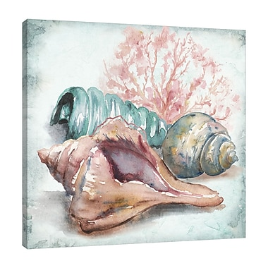 Highland Dunes 'Sea Shells III' Watercolor Painting Print on Wrapped Canvas; 18'' H x 18'' W