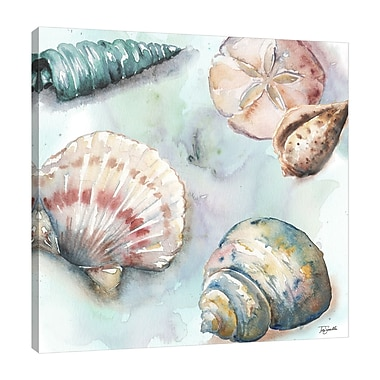 Highland Dunes 'Sea Shells' Watercolor Painting Print on Wrapped Canvas; 24'' H x 24'' W