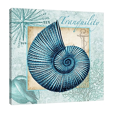 Highland Dunes 'Aqua Shell: Nautilus' Graphic Art Print on Wrapped Canvas; 36'' H x 36'' W