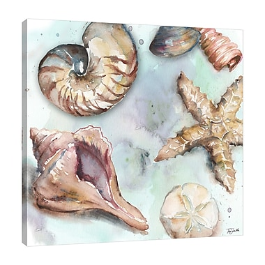 Highland Dunes 'Sea Shell Toss' Watercolor Painting Print on Wrapped Canvas; 36'' H x 36'' W