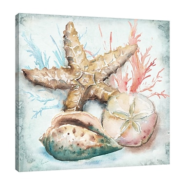 Highland Dunes 'Sea Shells II' Watercolor Painting Print on Wrapped Canvas; 48'' H x 48'' W