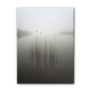 Highland Dunes 'Reeds in the Mist' Photographic Print on Canvas; 30'' H x 20'' W