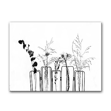 Gracie Oaks 'Black Flowers on White Background' Photographic Print on Canvas; 30'' H x 40'' W