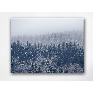 Loon Peak 'Frozen Trees' Photographic Print on Canvas; 20'' H x 30'' W