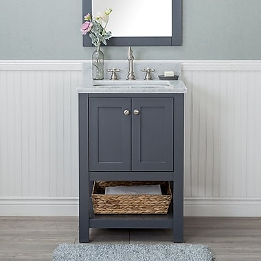 Darby Home Co Whiting 24'' Single Bathroom Vanity Set; Gray