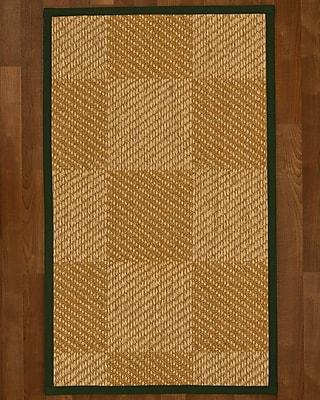 Bayou Breeze Adley Sisal Moss Area Rug; 5' X 8'