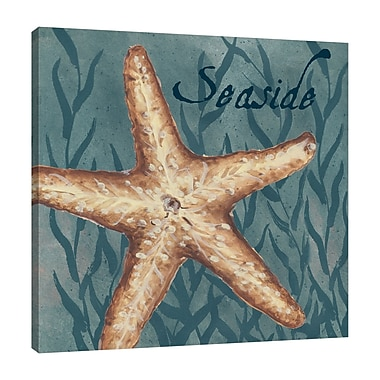 Highland Dunes 'Nautical Critters: Starfish' Graphic Art Print on Wrapped Canvas; 18'' H x 18'' W