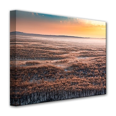 Ready2hangart 'Dawn' Photographic Print on Canvas; 20'' H x 30'' W
