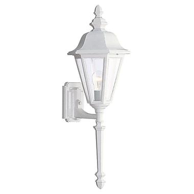 Alcott Hill Redfern 1-Light Outdoor Sconce; White