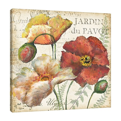 Winston Porter 'Poppies Histoire Naturelle II' Graphic Art Print on Wrapped Canvas; 12'' H x 12'' W