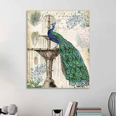 Ophelia & Co. 'Vintage Peacock I' Graphic Art Print on Wrapped Canvas; 20'' H x 16'' W