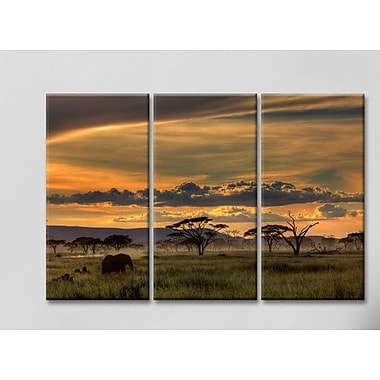 Bloomsbury Market 'Africa' Photographic Print Multi-Piece Image on Canvas; 40'' H x 60'' W