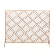 Home Loft Concepts Fleming Single Panel Iron Fireplace Screen; Copper