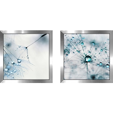 Ebern Designs 'Baby Blue' 2 Piece Framed Photographic Print Set
