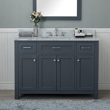Red Barrel Studio Cecilton 48'' Single Bathroom Vanity; Gray