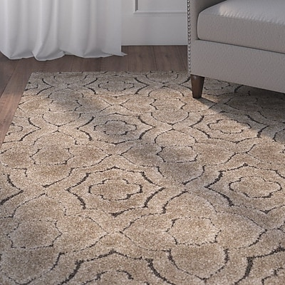 Charlton Home Stonybrook Brown Area Rug; Rectangle 4' x 6'