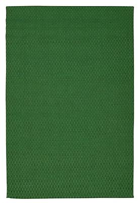 Breakwater Bay Hurst Hand-Woven Green Area Rug; 5' x 7'
