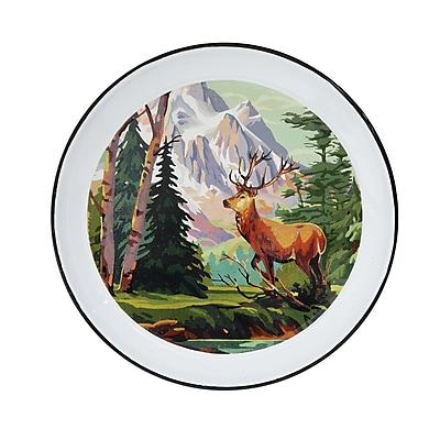 Loon Peak Gallagher Decorative Enamel Serving Tray