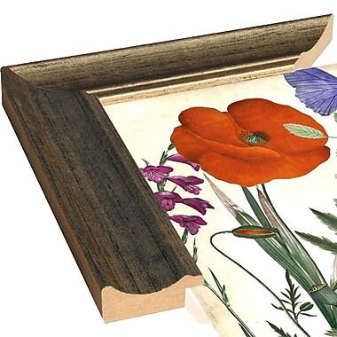 August Grove 'Printemps I' Graphic Art Print; Paper