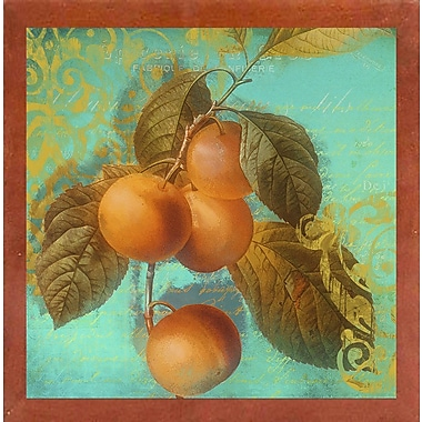 August Grove 'Glowing Fruits I' Graphic Art Print; Canadian Walnut Medium Framed