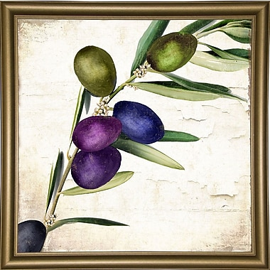 Charlton Home 'Olive Branch III' Print; Wrapped Canvas Floater Framed