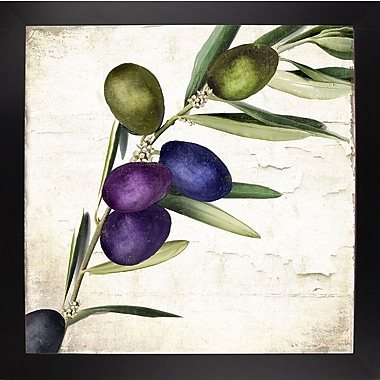 Charlton Home 'Olive Branch III' Print; Black Large Framed