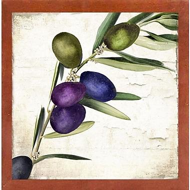 Charlton Home 'Olive Branch III' Print; Canadian Walnut Medium Framed