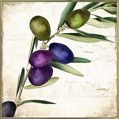 Charlton Home 'Olive Branch III' Print; Metal Gold Framed