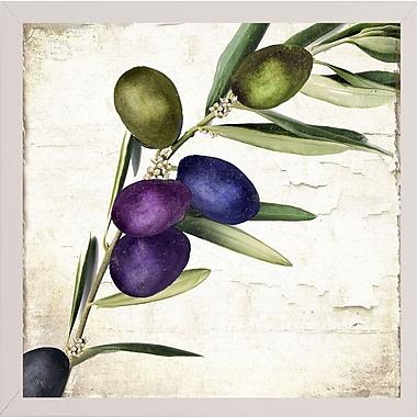 Charlton Home 'Olive Branch III' Print; White Medium Framed