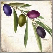 Charlton Home 'Olive Branch IV' Graphic Art Print; Metal Silver Framed