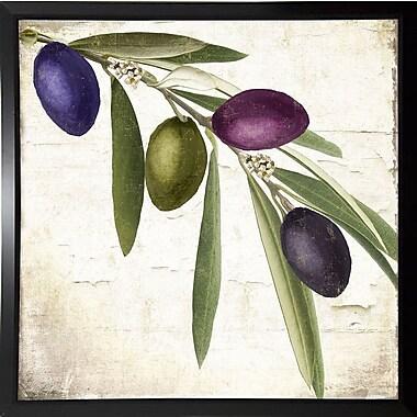 Charlton Home 'Olive Branch IV' Graphic Art Print; Plastic Black Framed