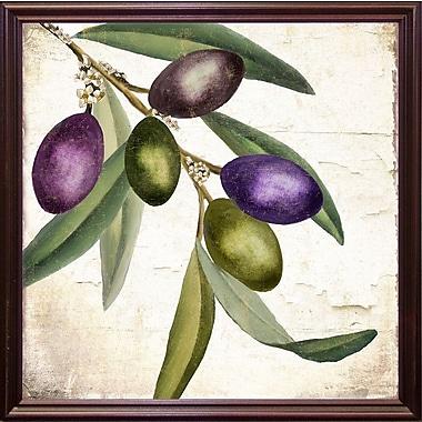 Charlton Home 'Olive Branch I' Graphic Art Print; Cherry Grande Framed