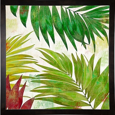 Bay Isle Home 'Brasilia I' Graphic Art Print; Cafe Espresso Framed